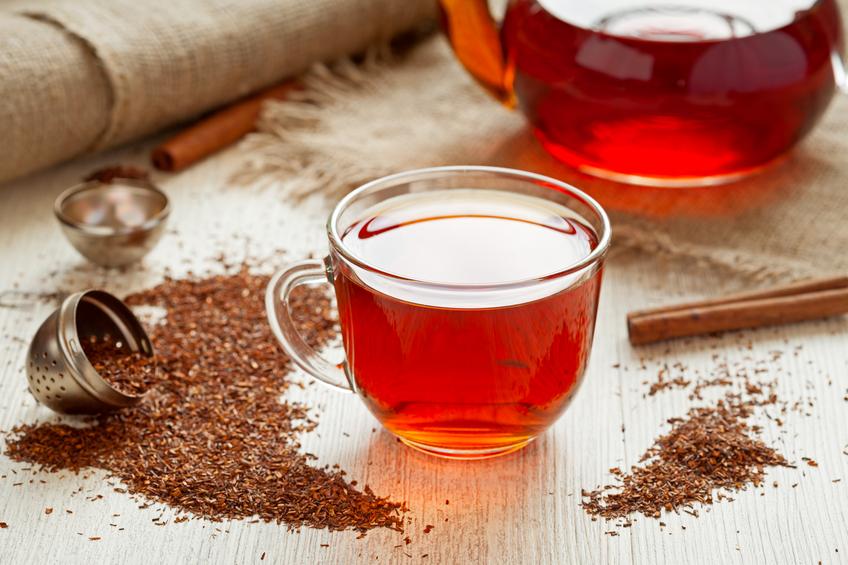 南非药用植物1:红灌木茶Rooibos Tea - 六一儿童 - 译海拾蚌