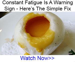 egg2-300x250jpg